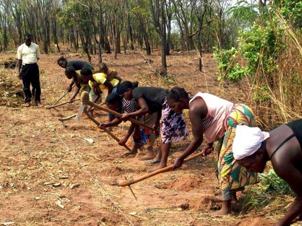 AG_women_digging