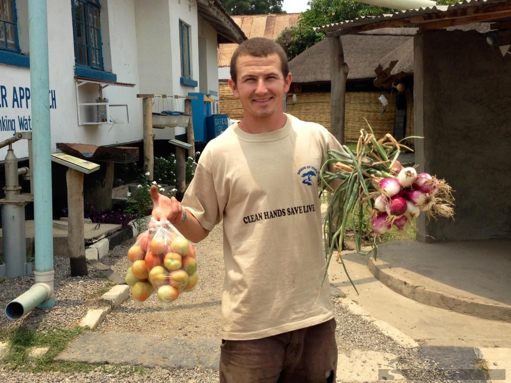 Matt Ellis- AG- onions