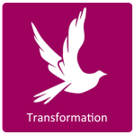 transformaiton icon
